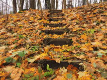 Escalera y hojas de otoño Fotografía de archivo