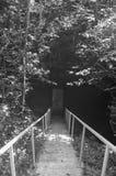 Escaleras abajo a la puerta oscura espeluznante blanco y negro imagen de archivo