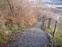 Escaleras al aire libre vacías con las hojas de otoño caidas Imagenes de archivo
