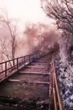 Escaleras al cielo Fotografía de archivo libre de regalías
