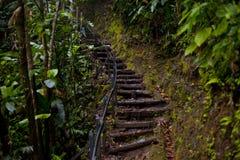 Escaleras al top Foto de archivo libre de regalías