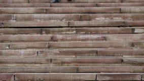 Escaleras antiguas las piernas de joven sirven el funcionamiento abajo de las escaleras almacen de video