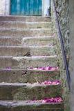 Escaleras con las flores imagen de archivo libre de regalías