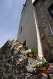 Escaleras con las flores fotografía de archivo