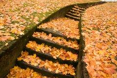 Escaleras con las hojas de otoño Foto de archivo libre de regalías