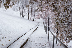 Escaleras con una barandilla en la nieve en el parque Fotografía de archivo libre de regalías