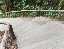 Escaleras concretas curvadas con el carril de madera Fotos de archivo libres de regalías