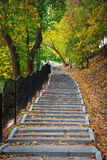 Escaleras concretas en el parque imagenes de archivo