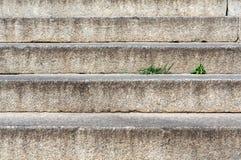 Escaleras concretas modernas abstractas a la construcción - composición de la escalera Imagen de archivo