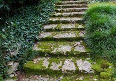 Escaleras constructivas abandonadas Foto de archivo