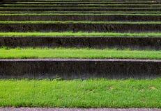 Escaleras de la hierba fotos de archivo