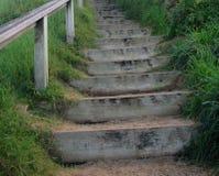 Escaleras de la naturaleza foto de archivo libre de regalías