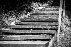 Escaleras de madera blancos y negros imagen de archivo libre de regalías