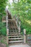 Escaleras de madera de la montaña Fotografía de archivo libre de regalías