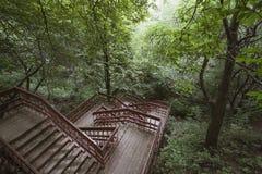 Escaleras de madera en el parque imagenes de archivo