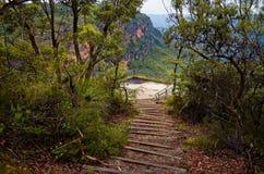 Escaleras de madera en pista de la montaña en arbusto australiano Foto de archivo