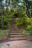 Escaleras de madera en pista de la montaña en arbusto australiano Fotos de archivo