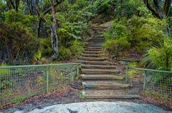 Escaleras de madera en pista de la montaña en arbusto australiano Fotografía de archivo libre de regalías