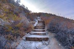 Escaleras de madera en un alza en California meridional Imagen de archivo libre de regalías