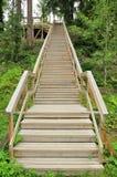 Escaleras de madera en un parque entre árboles Foto de archivo