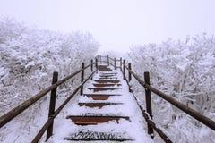 Escaleras de madera en una ladera en invierno Montañas de Deogyusan en Corea imágenes de archivo libres de regalías