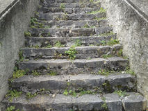 Escaleras de piedra Fotografía de archivo