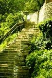 Escaleras de piedra en campo Imagenes de archivo