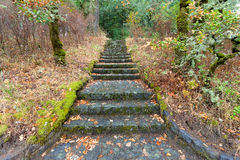 Escaleras de piedra en Eagle Creek Overlook imagenes de archivo