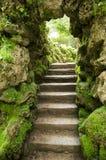 Escaleras de piedra en la naturaleza Imagenes de archivo