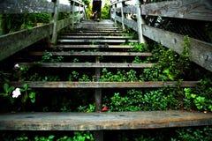 Escaleras de San Francisco Imágenes de archivo libres de regalías