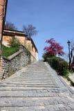Escaleras de Sighisoara imagen de archivo