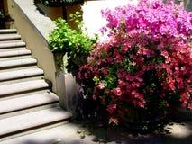 escaleras del jardín fotografía de archivo