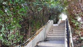 Escaleras en el jardín de Alhambra, Granada, España fotos de archivo