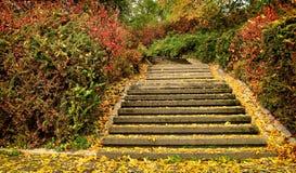 Escaleras en el otoño Imagen de archivo libre de regalías