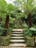 Escaleras en el parque Imagenes de archivo