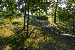 Escaleras en el parque Fotografía de archivo libre de regalías