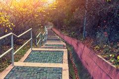 Escaleras en la colina en el parque fotografía de archivo