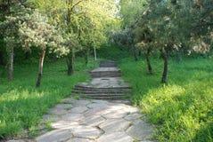 Escaleras en la naturaleza Foto de archivo libre de regalías