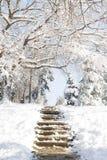 Escaleras en la nieve Fotografía de archivo libre de regalías