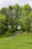 Escaleras en parque del gowski de SzelÄ… fotografía de archivo