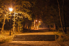 Escaleras en parque en noche Imagen de archivo