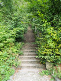Escaleras en Sighisoara Imágenes de archivo libres de regalías