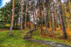 Escaleras encima de la colina con los colores de la caída imagenes de archivo