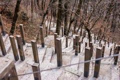 Escaleras escarpadas con la barandilla de la cuerda Imágenes de archivo libres de regalías