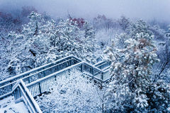Escaleras frías Imagen de archivo libre de regalías