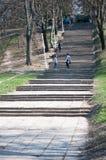 Escaleras largas del parque Foto de archivo libre de regalías