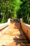 Escaleras para el paseo hacia arriba y hacia abajo al volcán o a Khao Krad del kradong del khao Imagenes de archivo