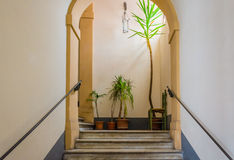 Escaleras, plantas y una silla fotos de archivo