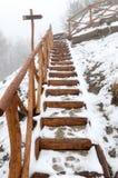 Escaleras que nievan Fotografía de archivo libre de regalías
