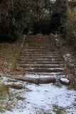 Escaleras que nievan viejas durante invierno Fotos de archivo libres de regalías